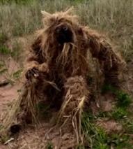 Человекоподобное существо появилось на полуострове в Висконсин