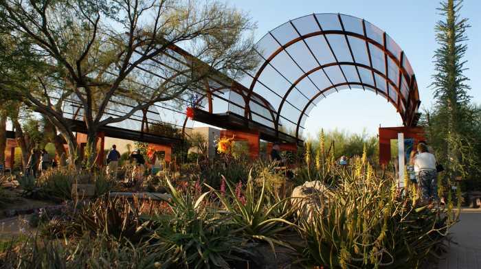 Botanicheskij sad pustyni - Финикс (Аризона) - популярный город в США