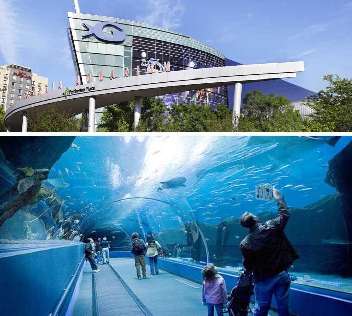 Okeanarium Georgia Aquarium - Город Атланта, Джорджия, США