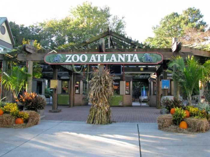 Zoopark v Atlante - Город Атланта, Джорджия, США