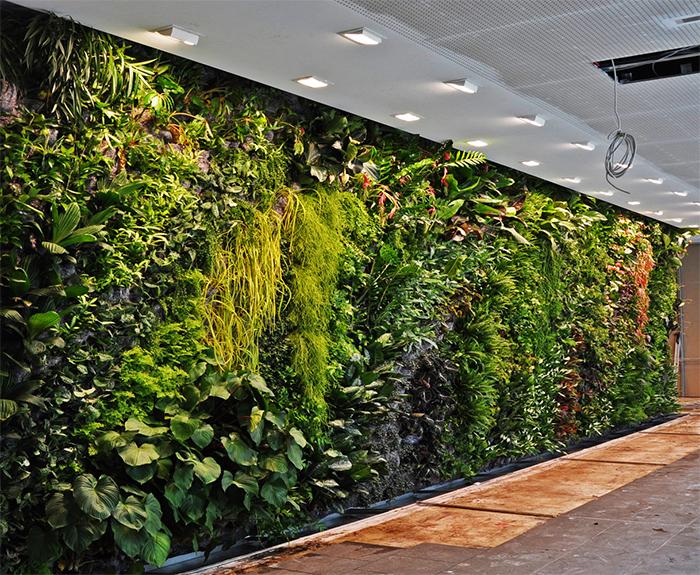 Растительная стена