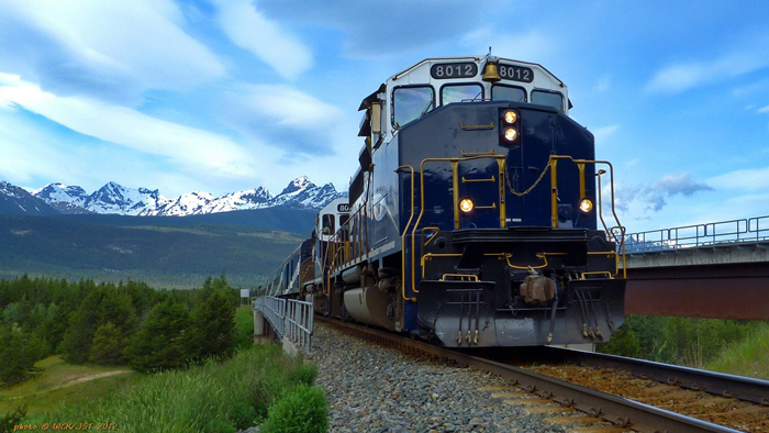 ZHeleznye dorogi SSHA - Железные дороги США: история и описание