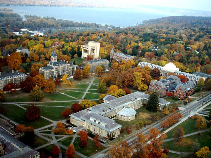 Struktura universiteta - Корнеллский университет, штат Нью-Йорк