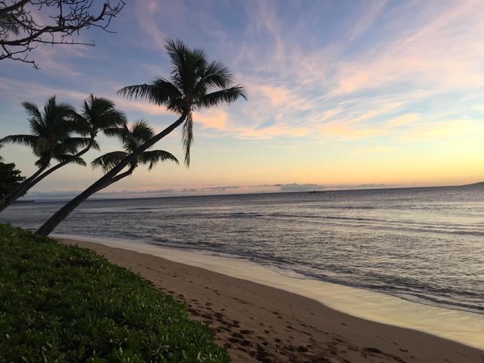 Maui priroda - Остров Мауи (Гавайи): описание, достопримечательности