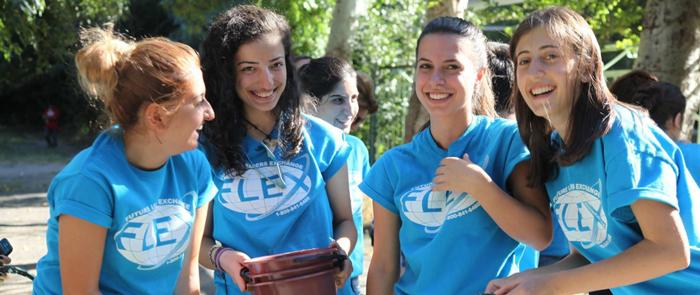 FLEX - Программы обмена в США
