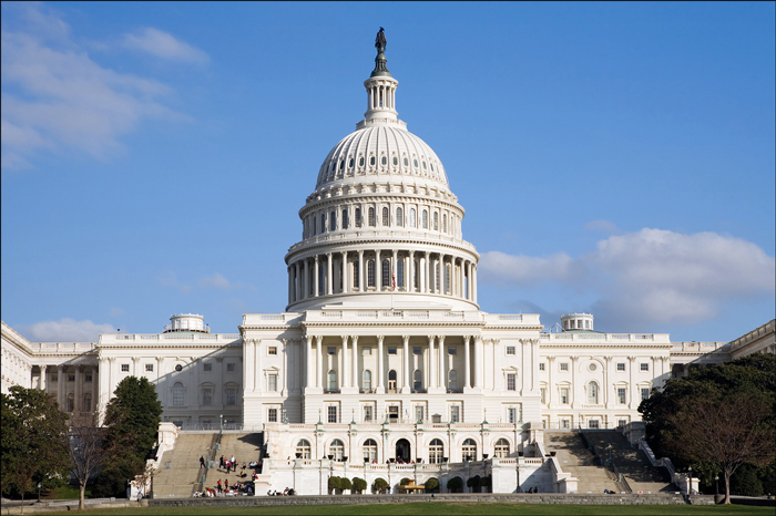 Pravitelstvo v SSHA - Правительство в США